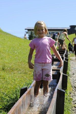 Hopfgarten: Wasserlauf2