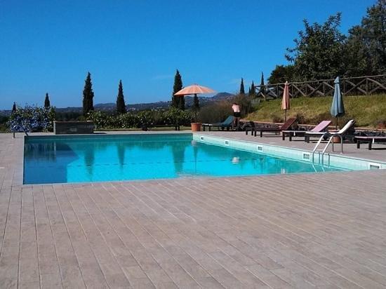 Agriturismo Tenuta San Michele: la piscine vue du patio petit dejeuner