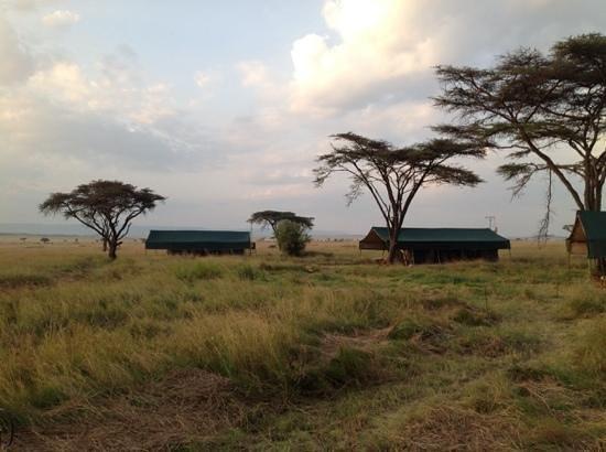 Kampi Kampi Serengeti: view of the camp