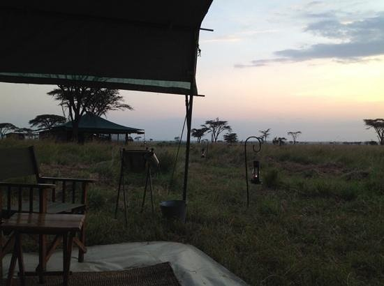 Kampi Kampi Serengeti: our tent