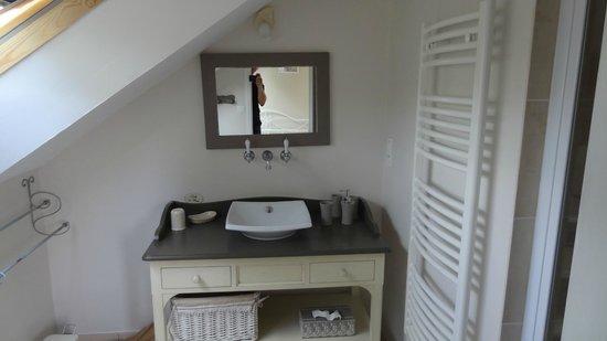 Chambres d'Hotes la Grenouillere: salle de bain