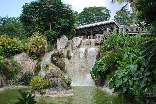 O Coeur de Deshaies : La cascade et le restaurant du Jardin botanique