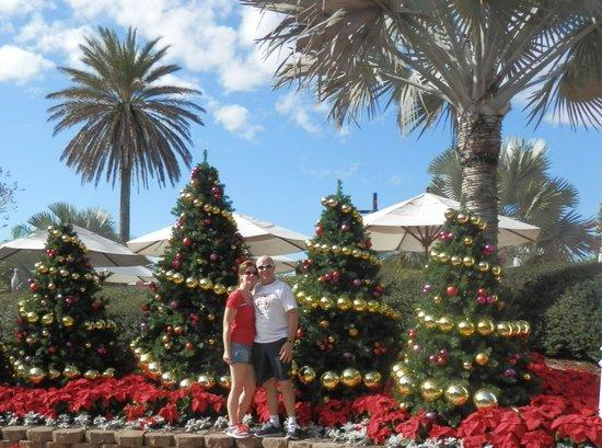 Busch Gardens : Christmas in the Sun