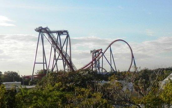 Busch Gardens : View of Sheikra