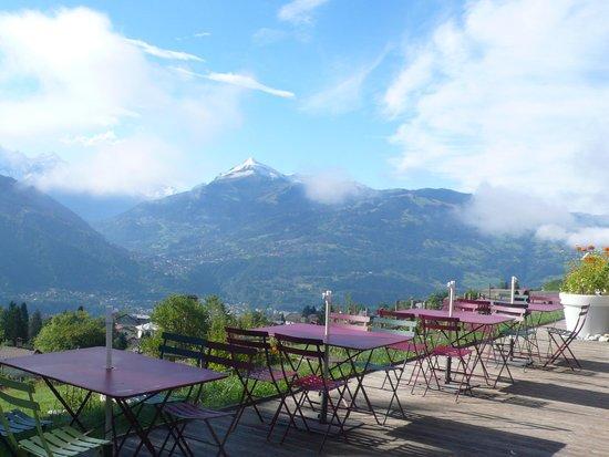 Le Cafe Du Jardin Passy Omd Men Om Restauranger