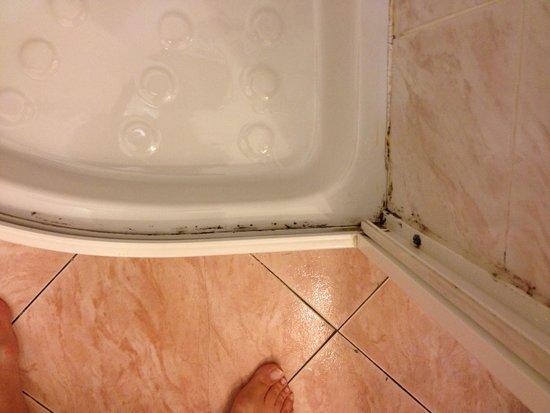 Park Hotel Regina: Shower