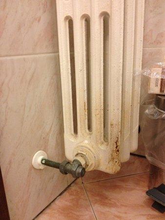 Park Hotel Regina: Bathroom