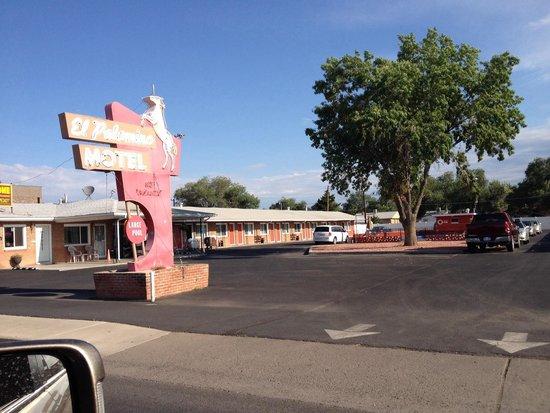 Grand Junction Palomino Inn: Great rest stop!