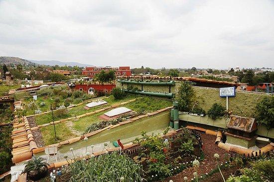 Hacienda El Santuario: techos verdes ecologicos