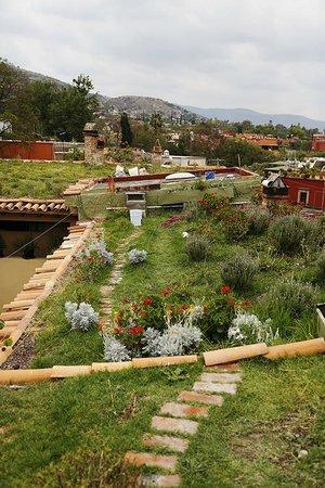 Hacienda El Santuario: techos verdes ecológicos
