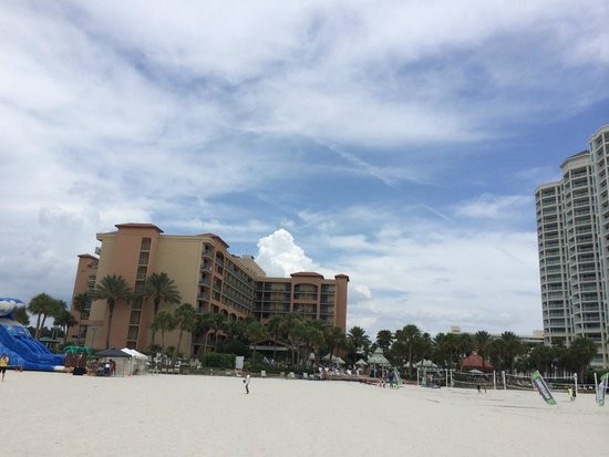 Sheraton Sand Key Resort : On the beach