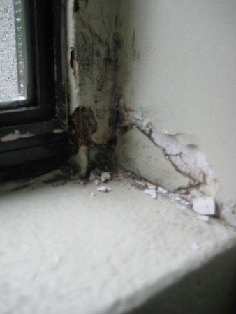 West Coast Suites at UBC: Bedroom window