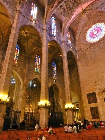 Palma Catedral Le Seu: Vast.