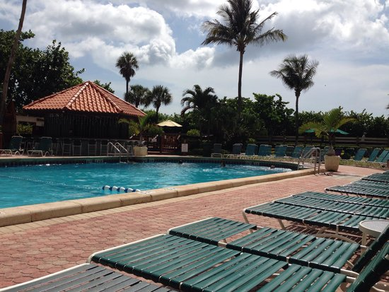 Lexington Hotel - Miami Beach: Piscina