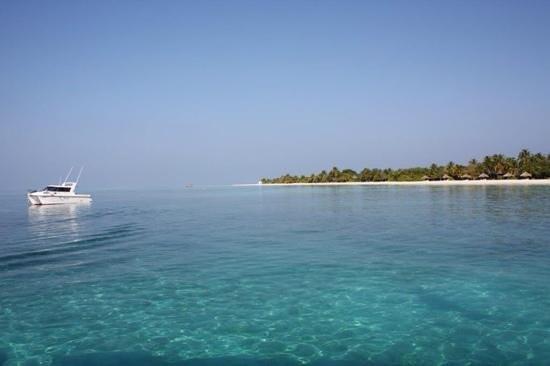 Kuredu Island Resort & Spa: Vue du ponton...