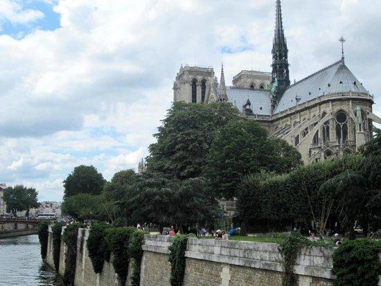 La Seine : Seine by Notre Dame
