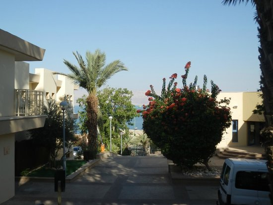 Ein Gedi - Beit Sarah Guest House : Il giardino dell'ostello