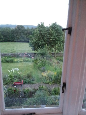 Juniper, UK: Our views