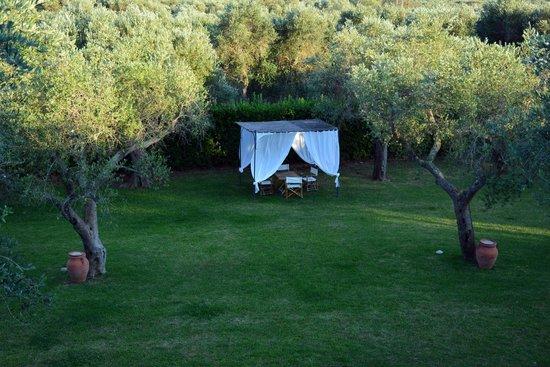 Tenuta Centoporte: il giardino visto dalla camera