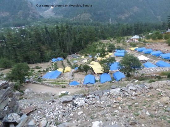 Kinner Camp Sangla: Camp in forest by the river