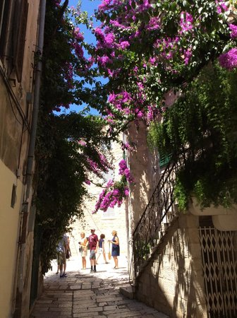 Apartments Djanovic: Alley way on the way to great room
