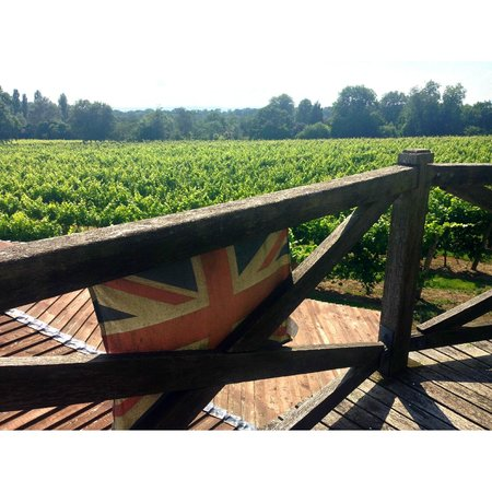 Nutbourne Vineyard: View from the old mill