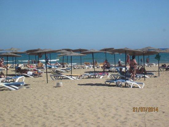 Iberostar Saidia : praia