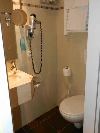 """Hotel Schlicker """"Zum Goldenen Löwen"""": Bathroom"""