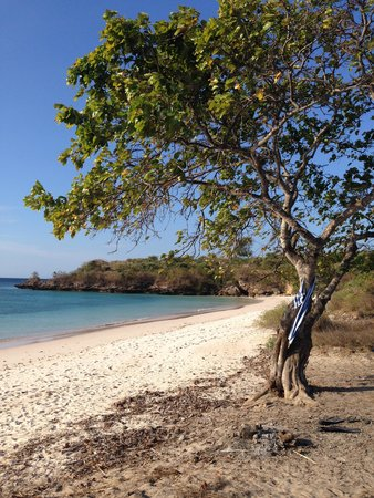 Jeeva Beloam Beach Camp: The 'swimming and sunset' beach nearby