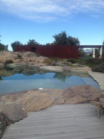Hotel Fasano Punta del Este: piscina do hotel