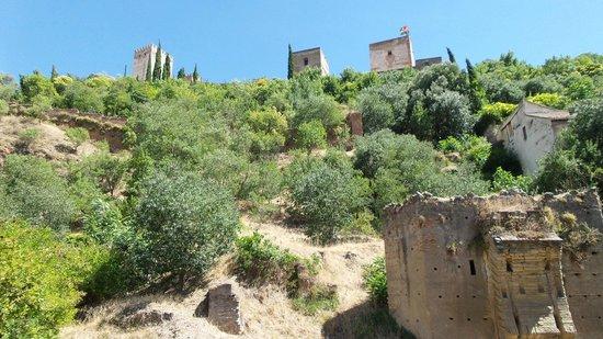 Shine Albayzin: Alhambra view from the street below