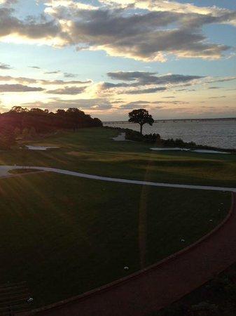Hyatt Regency Chesapeake Bay Golf Resort, Spa & Marina: evening from my room