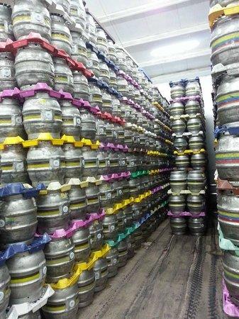Ringwood Brewery: Amazing amounts of beer!