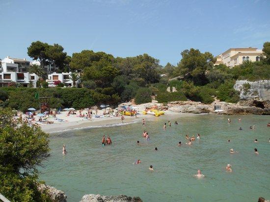 Barcelo Ponent Playa : aguas siempre tranquilas
