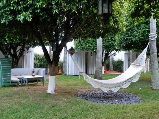 Delano South Beach Hotel: il giardino in piscina