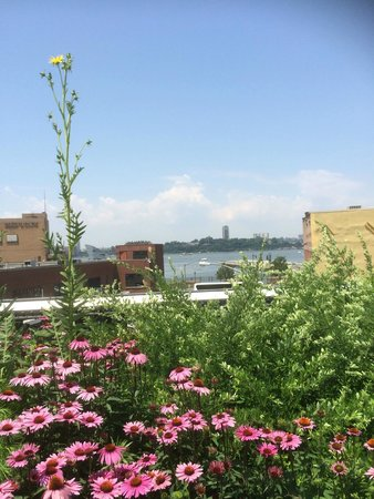 The Roosevelt Island Tramway: High Line