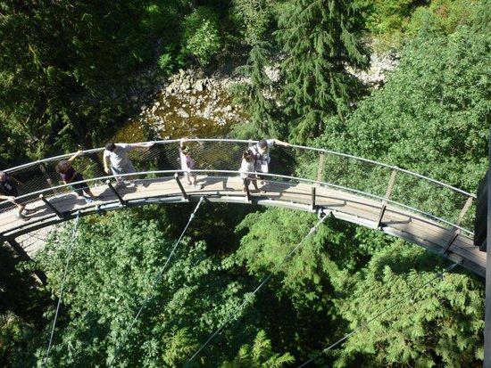 Capilano Suspension Bridge und Park: Beautiful place