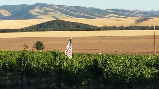 Walla Faces Inns at the Vineyard: View from the Guest House