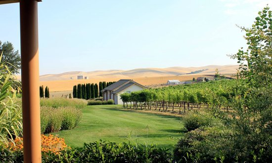 Walla Faces Inns at the Vineyard: View from the front porch