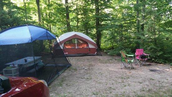 Trillium Woods Campground: Campsite B3