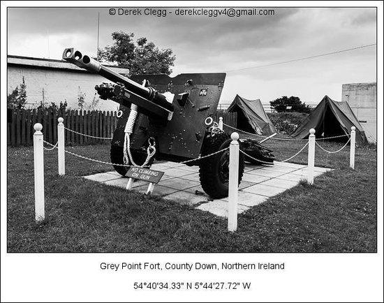 Grey Point Fort: Big Gun
