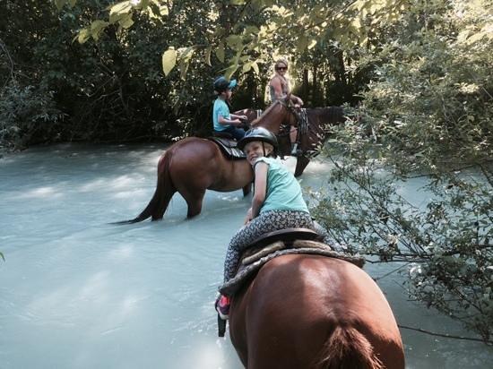 Adventure on Horseback : creek crossing