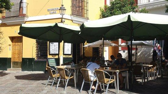 Cafe Alianza : Restaurante Alianza.  Barrio de Santacruz