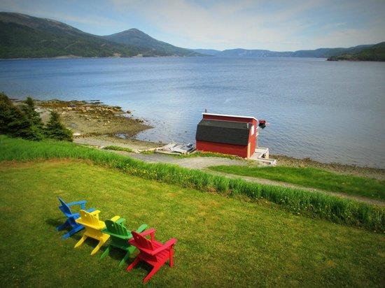 Neddies Harbour Inn: Amazing views