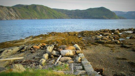 Neddies Harbour Inn: Beachcombing at Norris Point