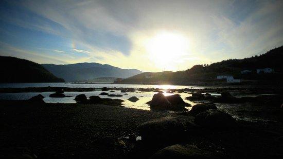 Neddies Harbour Inn: Amazing sunset at Norris Point