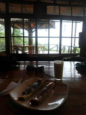 Finca Punta Ayampe: Vista desde la sala de estar hacia el mar