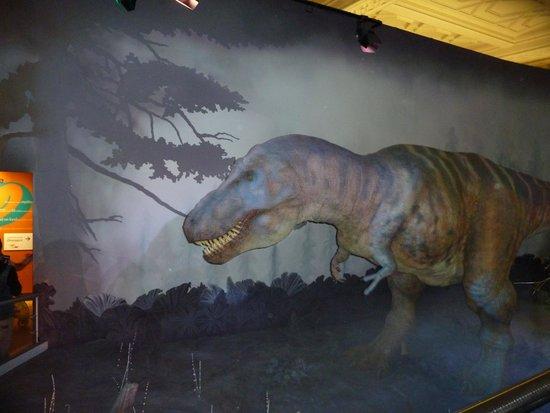 T REX Science Museum