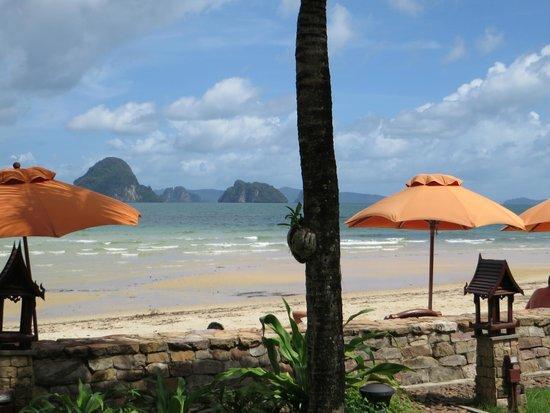Amari Vogue Krabi: The beach