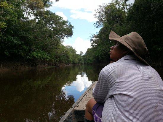 Ecological Jungle Trips: Ausflug mit unserem Guide Frank